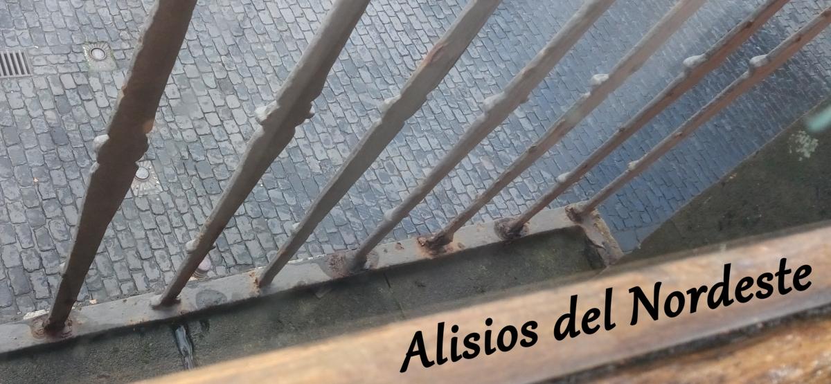 Detectan óxido en los forjados de las ventanas del ayuntamiento de La Laguna